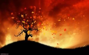 Falling in love like a leaf....